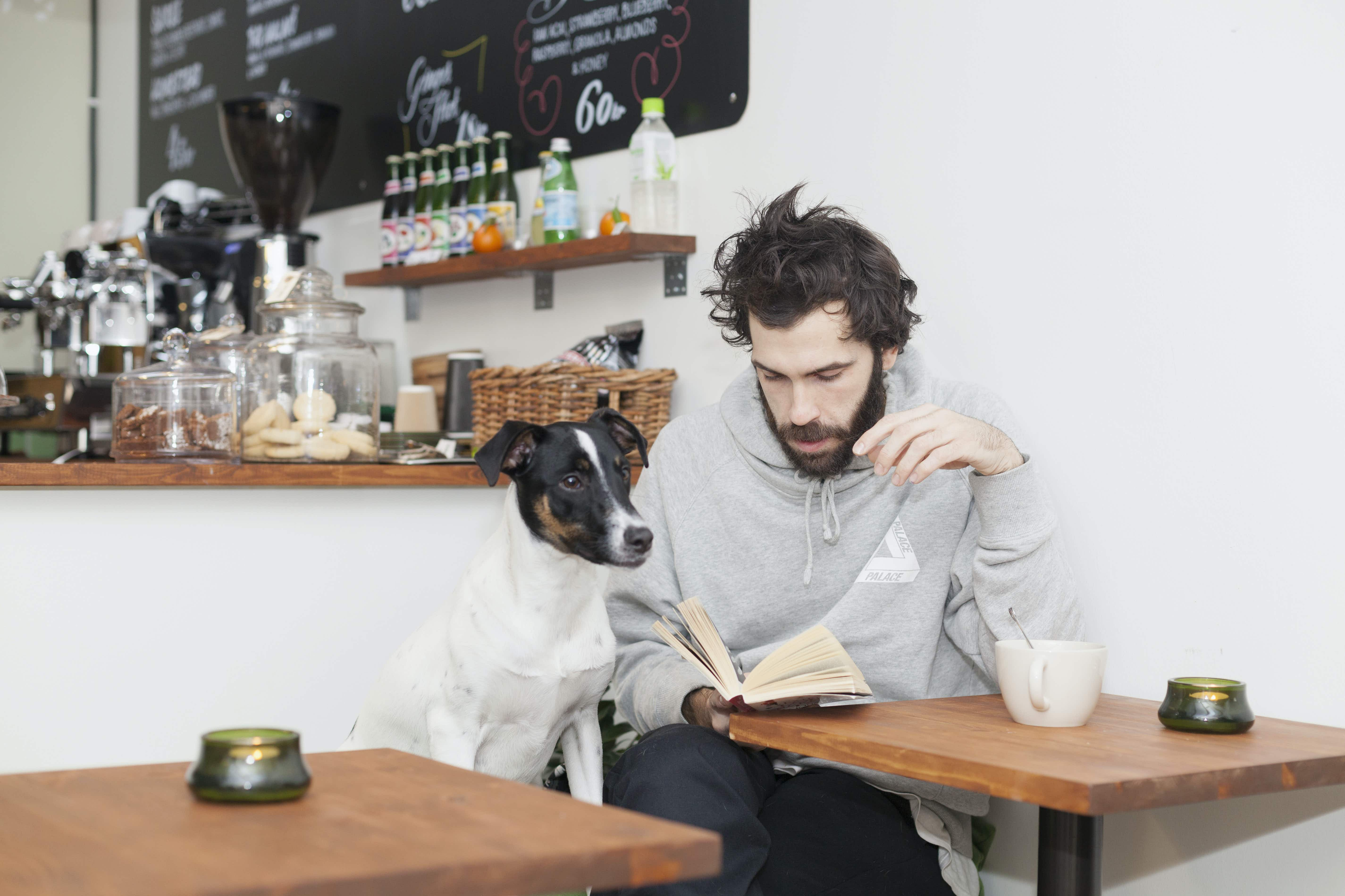 Bring Your Own Dog to New York City's very first canine café in Manhattan