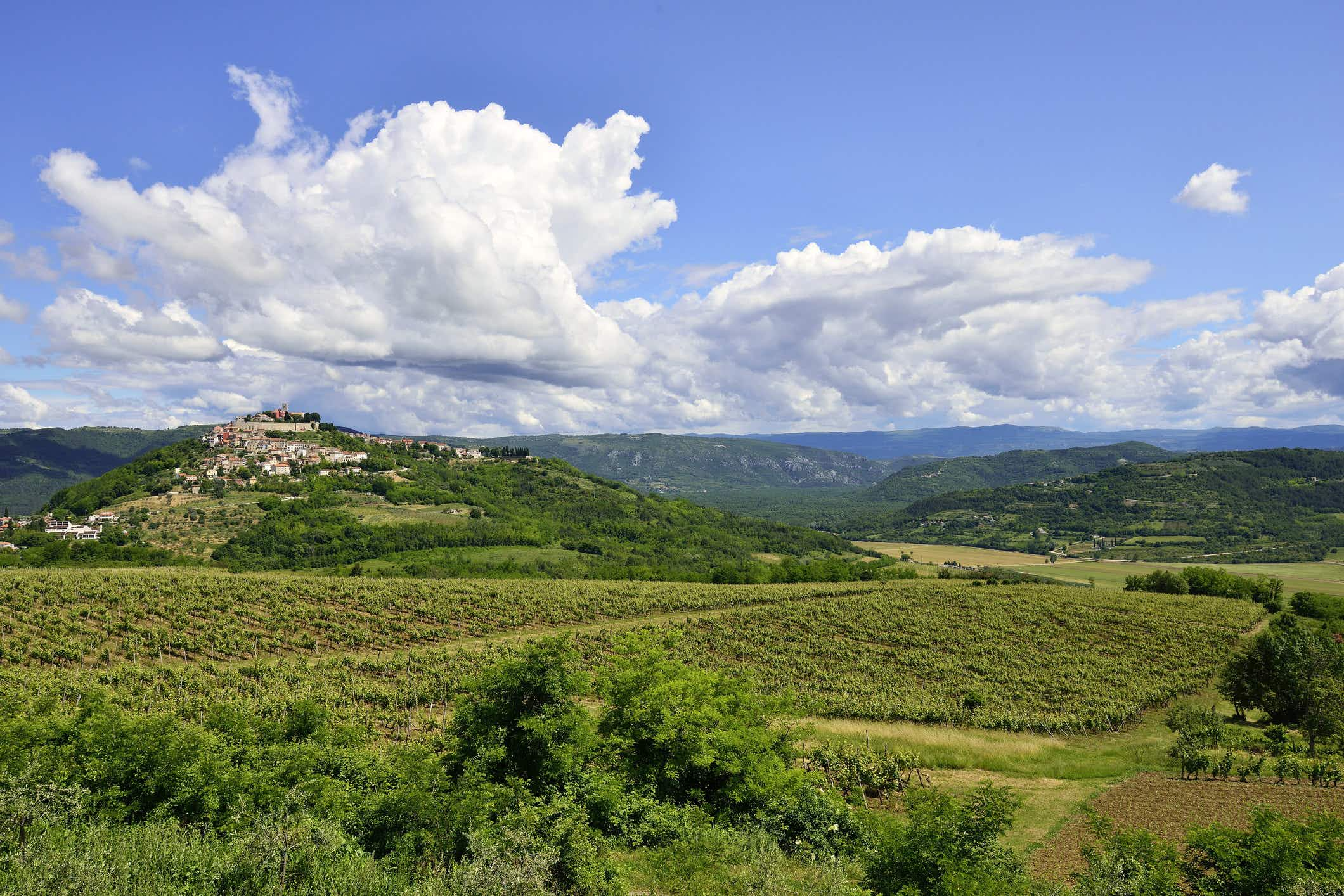 Cheers to the upcoming super-modern winery in the Croatian peninsula of Istria
