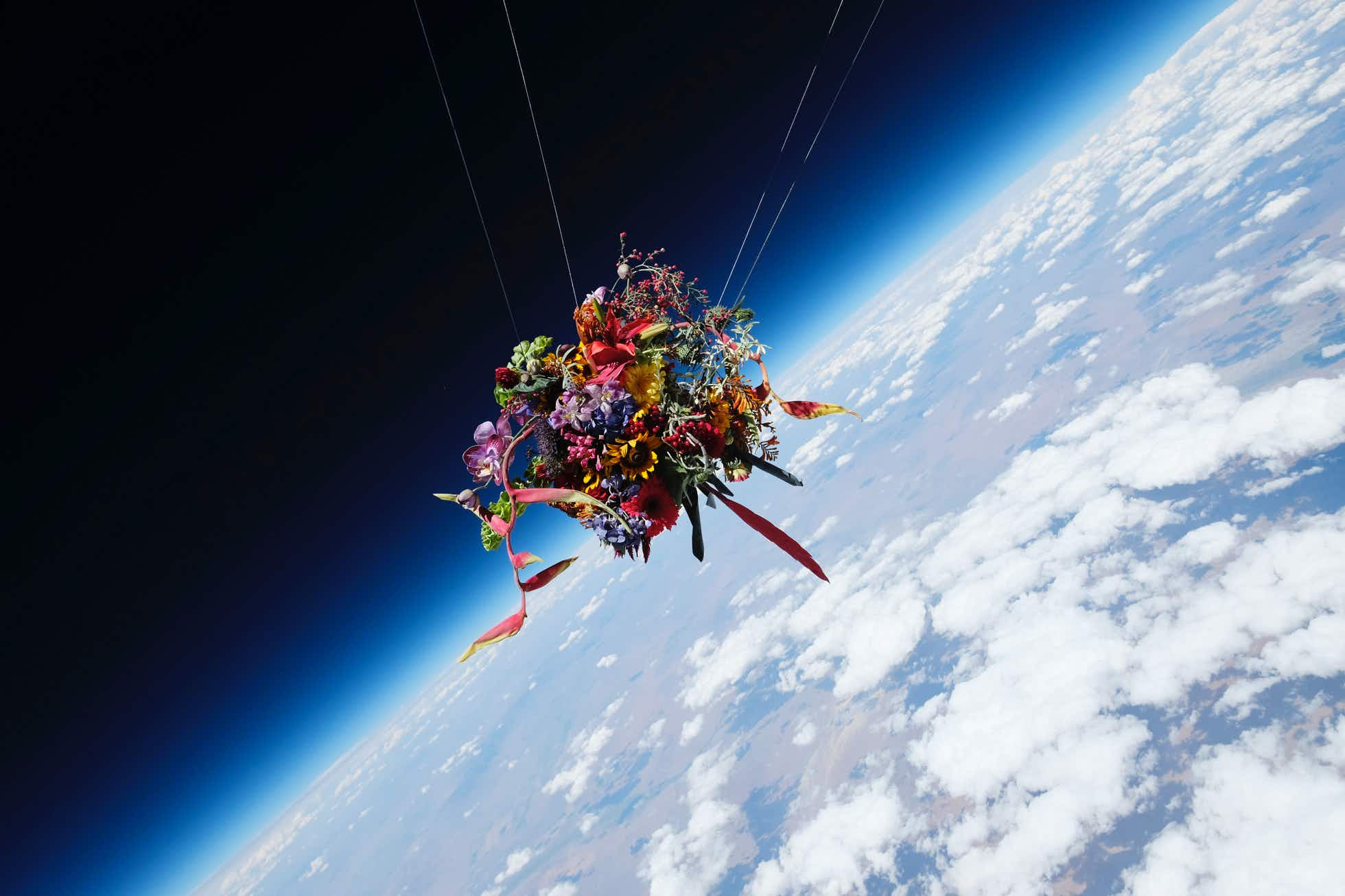 This art installation saw flowers being launched into the stratosphere above Nevada