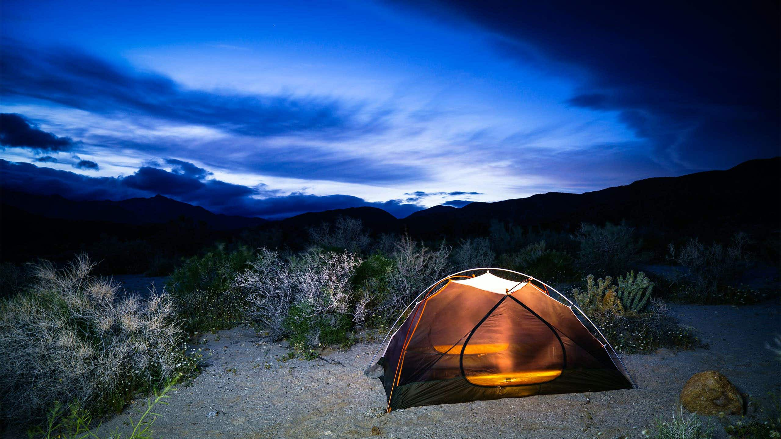 A new website makes reserving camping spots at California's state parks a breeze