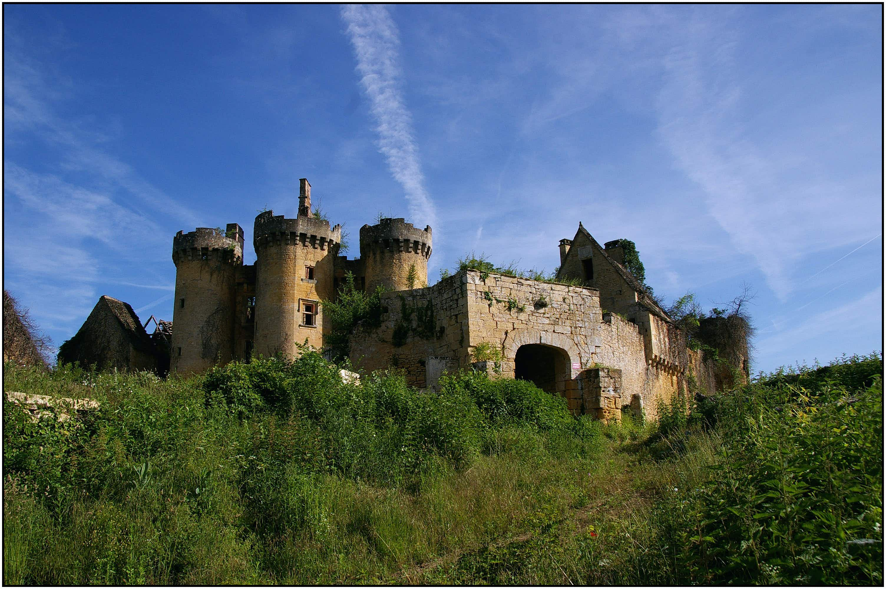 Now is your chance to adopt an historic French castle with a colourful past for just €50