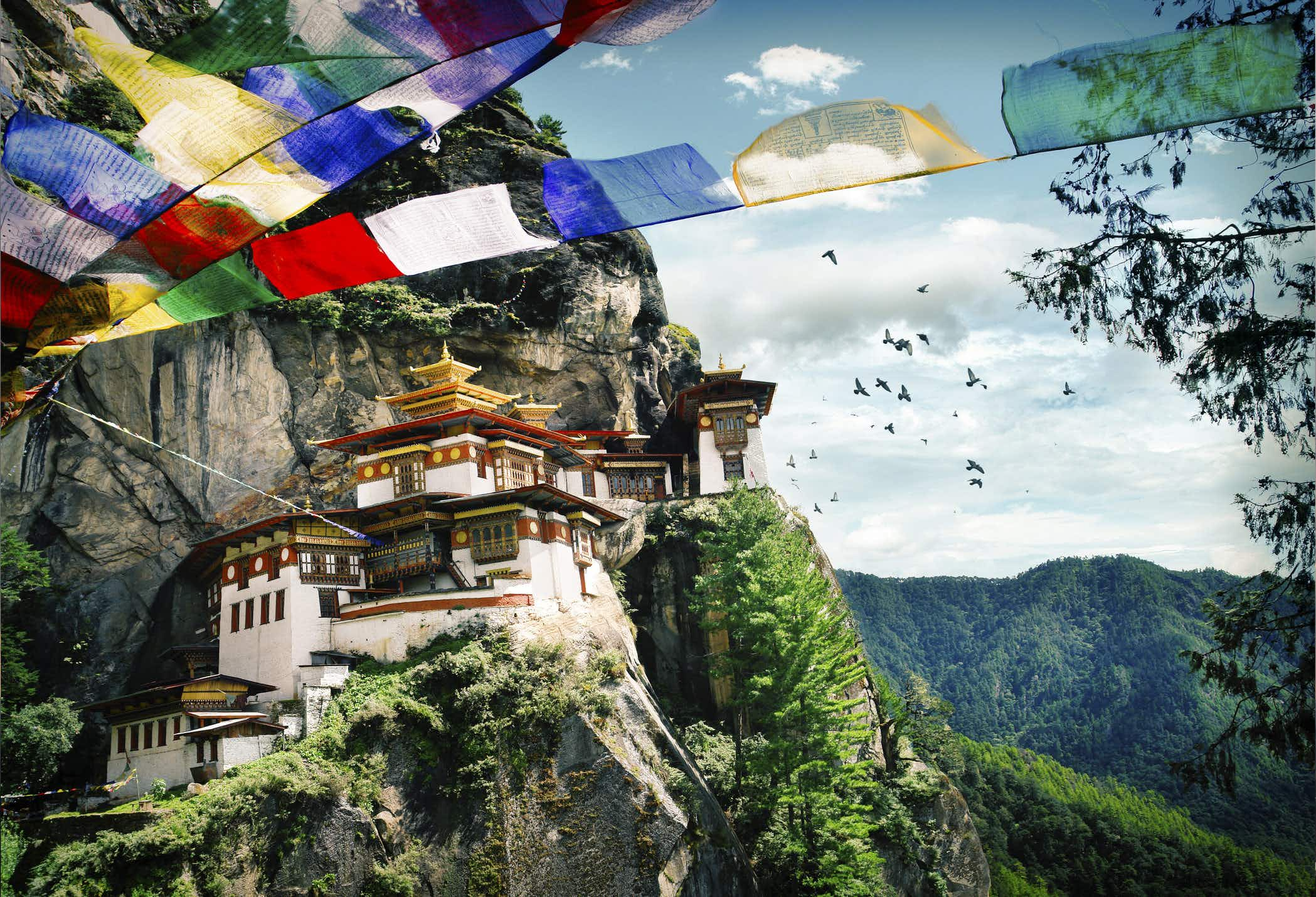 Bhutan hidden heritage forests open for the first time
