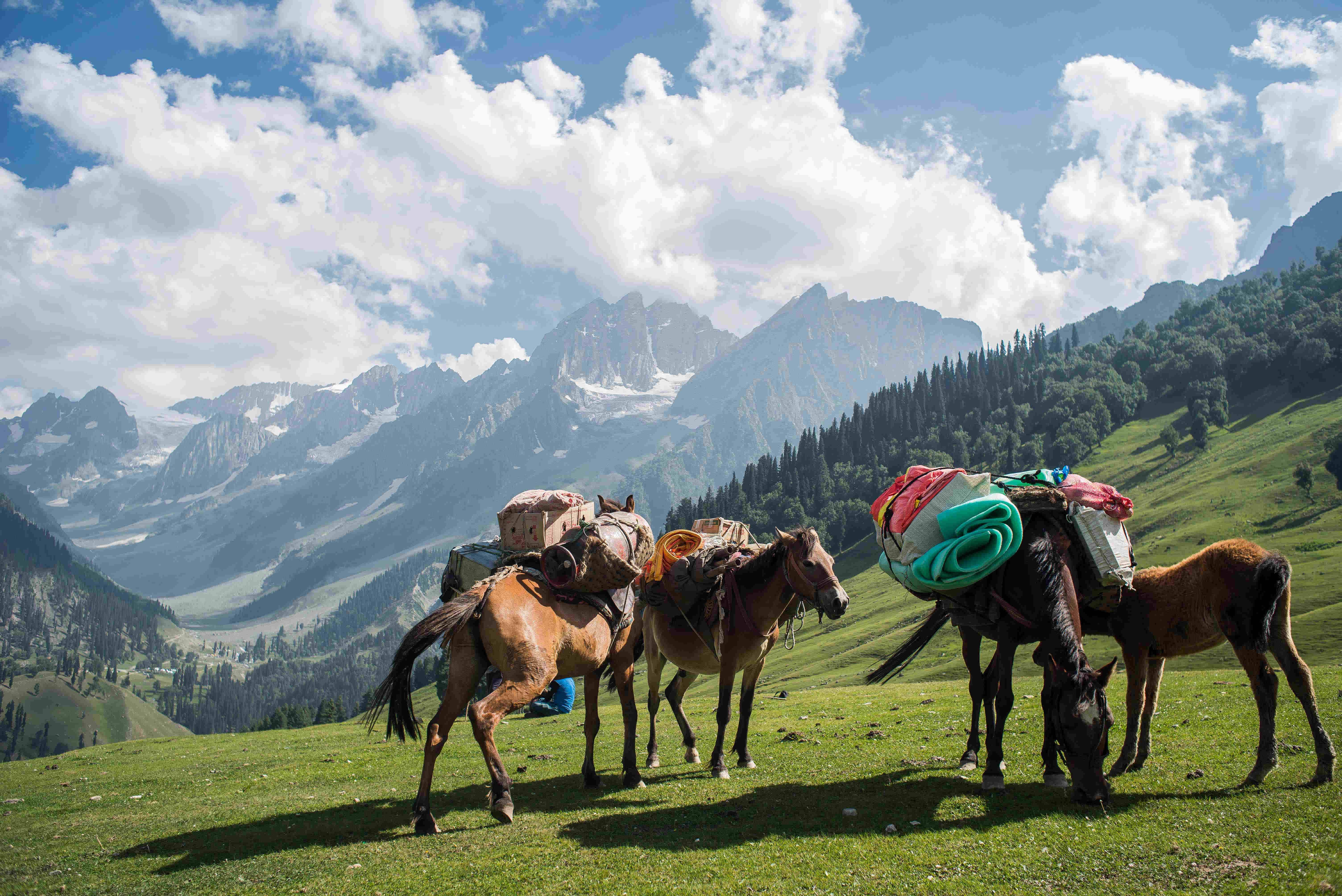 Everyday life in Kashmir captured in these incredible images