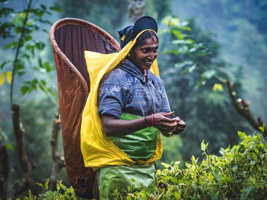 See Sri Lanka's Vedda tribe captured in these incredible portraits