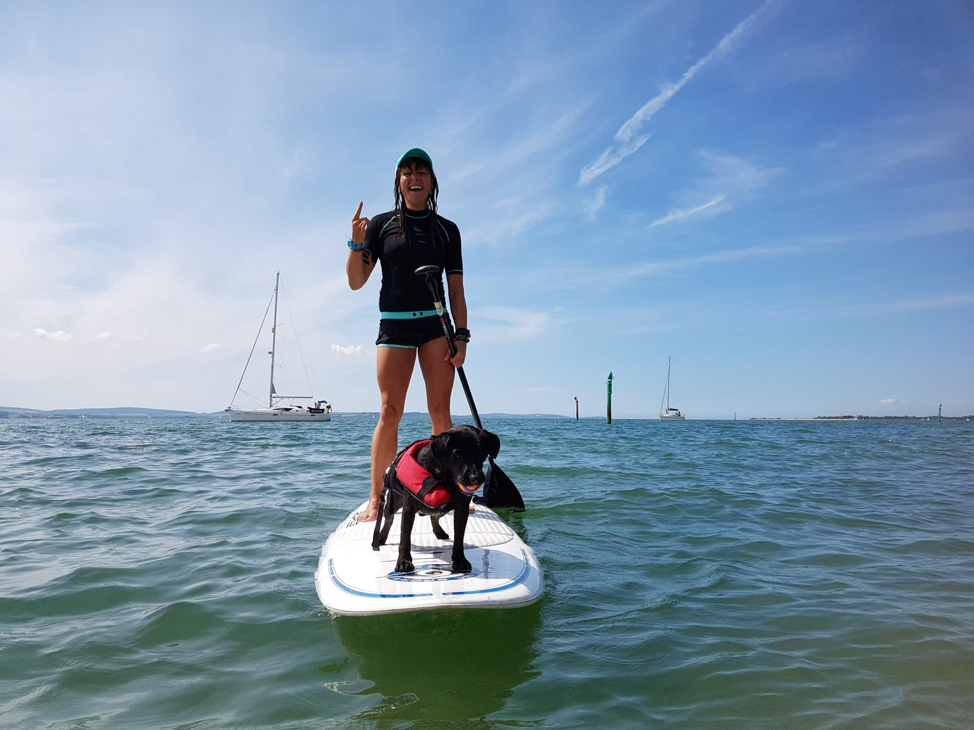 A woman and her four-legged friend are cleaning England's South Coast on a paddleboard