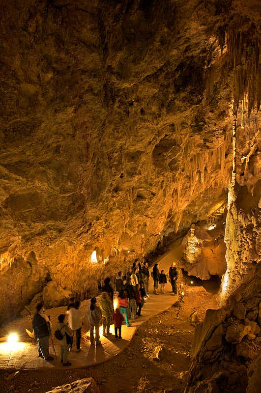 Mojave Desert's spectacular Mitchell Caverns reopen after years of closure