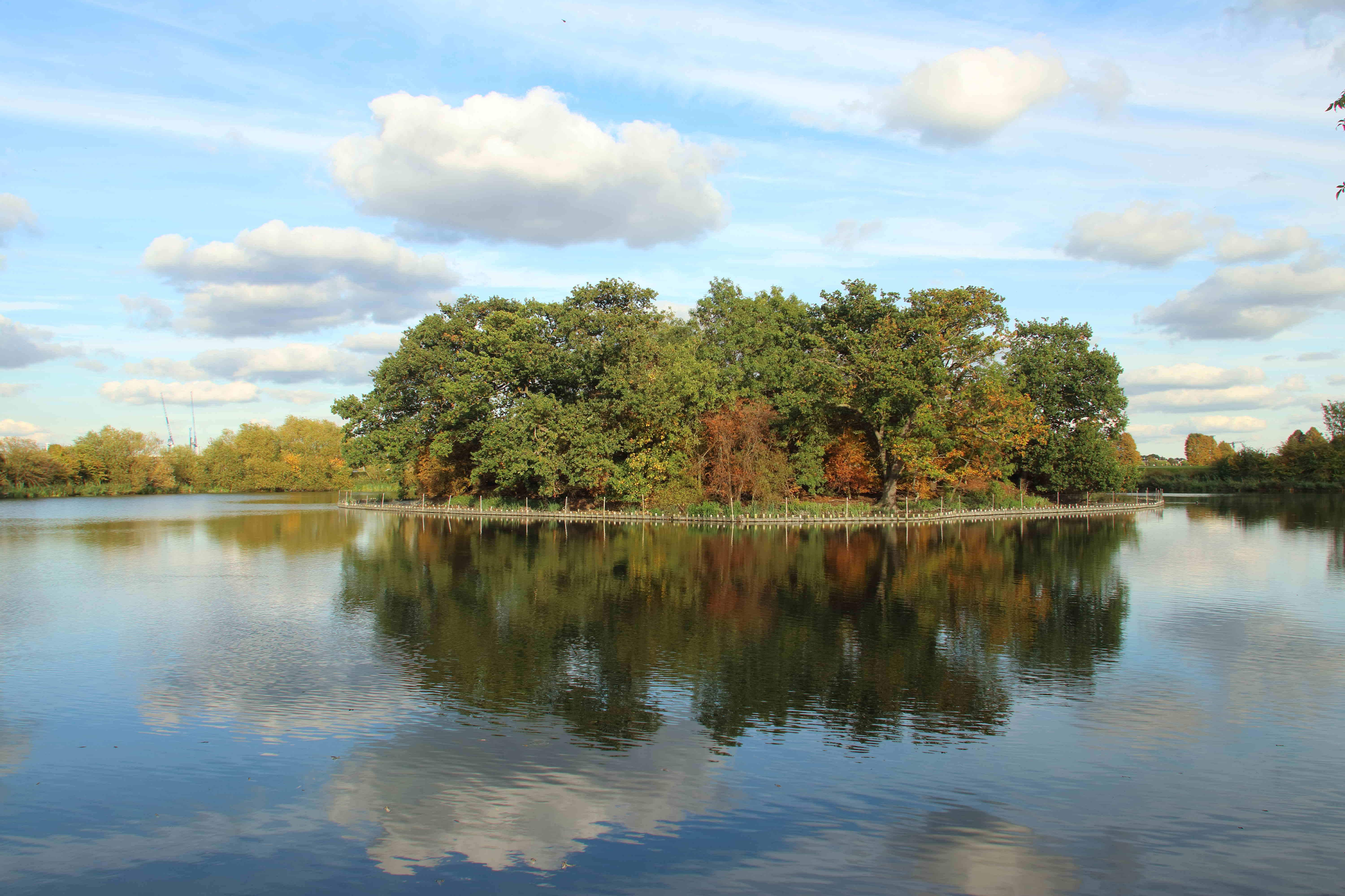 Europe's largest urban wetland nature reserve opens to the public