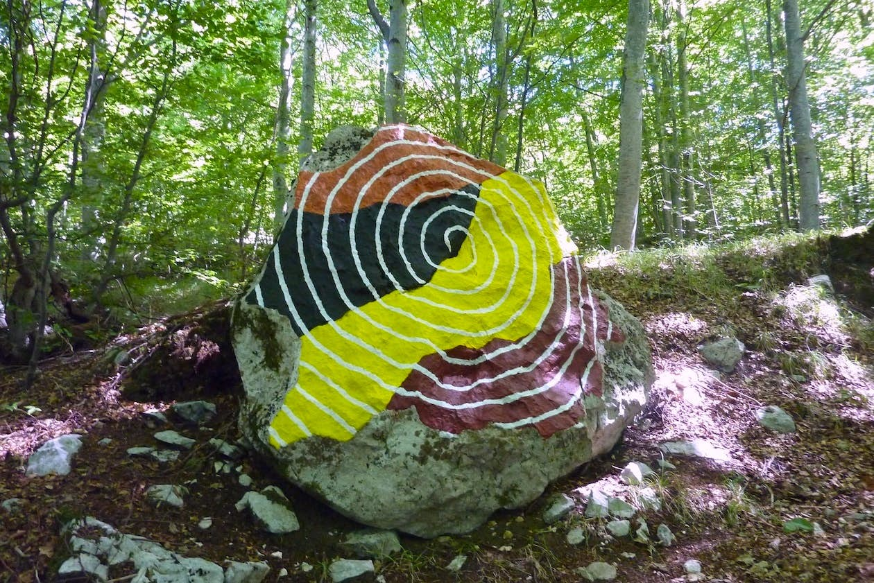 Spirals are found everywhere in nature, even in our DNA. Photo by Boris Pecigoš