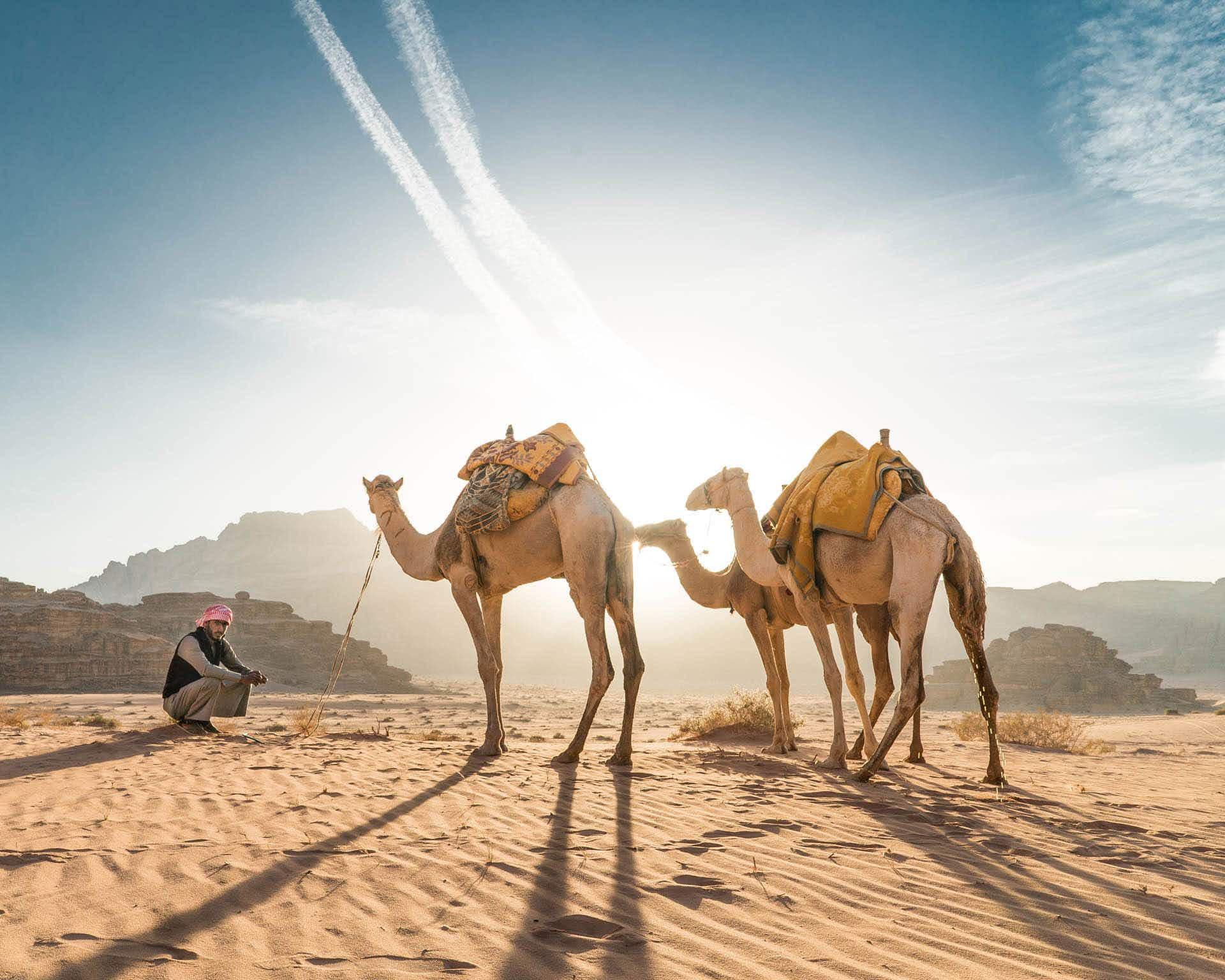 This beautiful short highlights the diverse beauty of Jordan