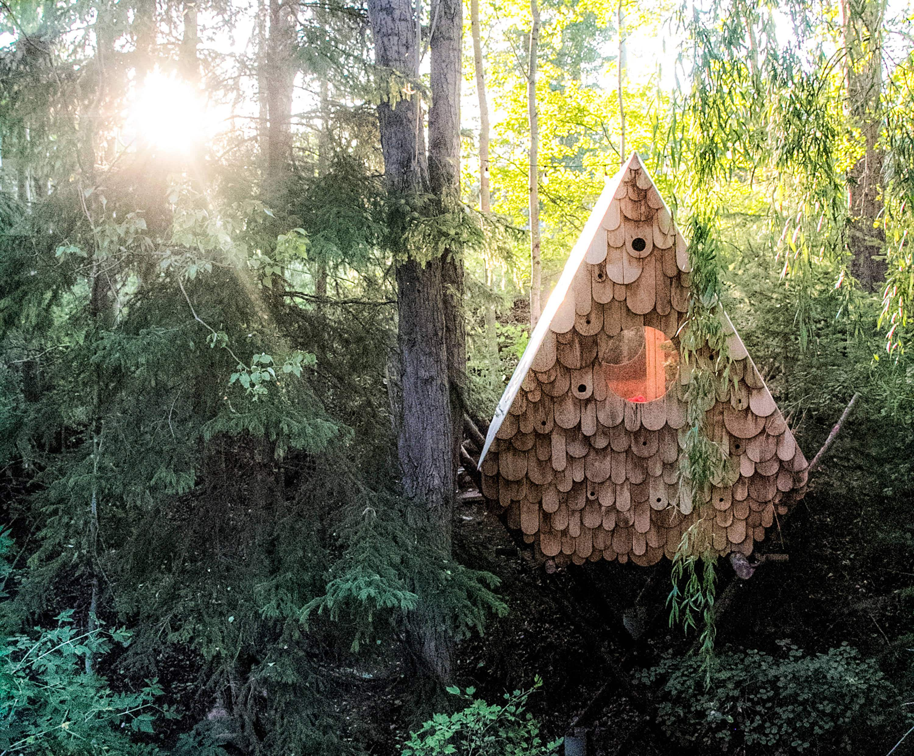 An incredible cabin in the Canadian wilderness looks just like a birdhouse