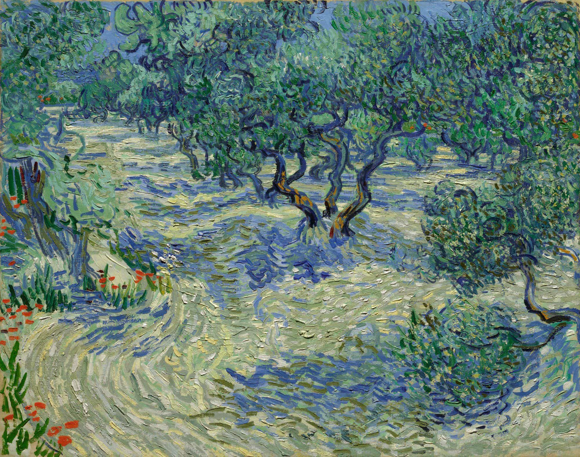 A grasshopper discovered embedded in a Van Gogh painting for 128 years