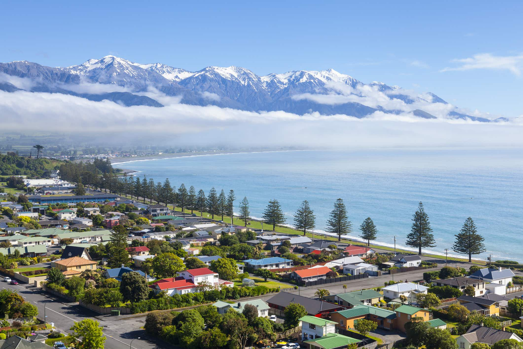 Reaching Kaikoura in New Zealand has again become straightforward for travellers