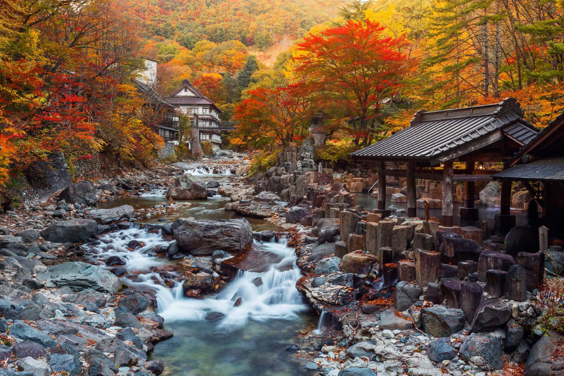 Nature lodges and ryokans are seeing a huge increase in interest on Airbnb