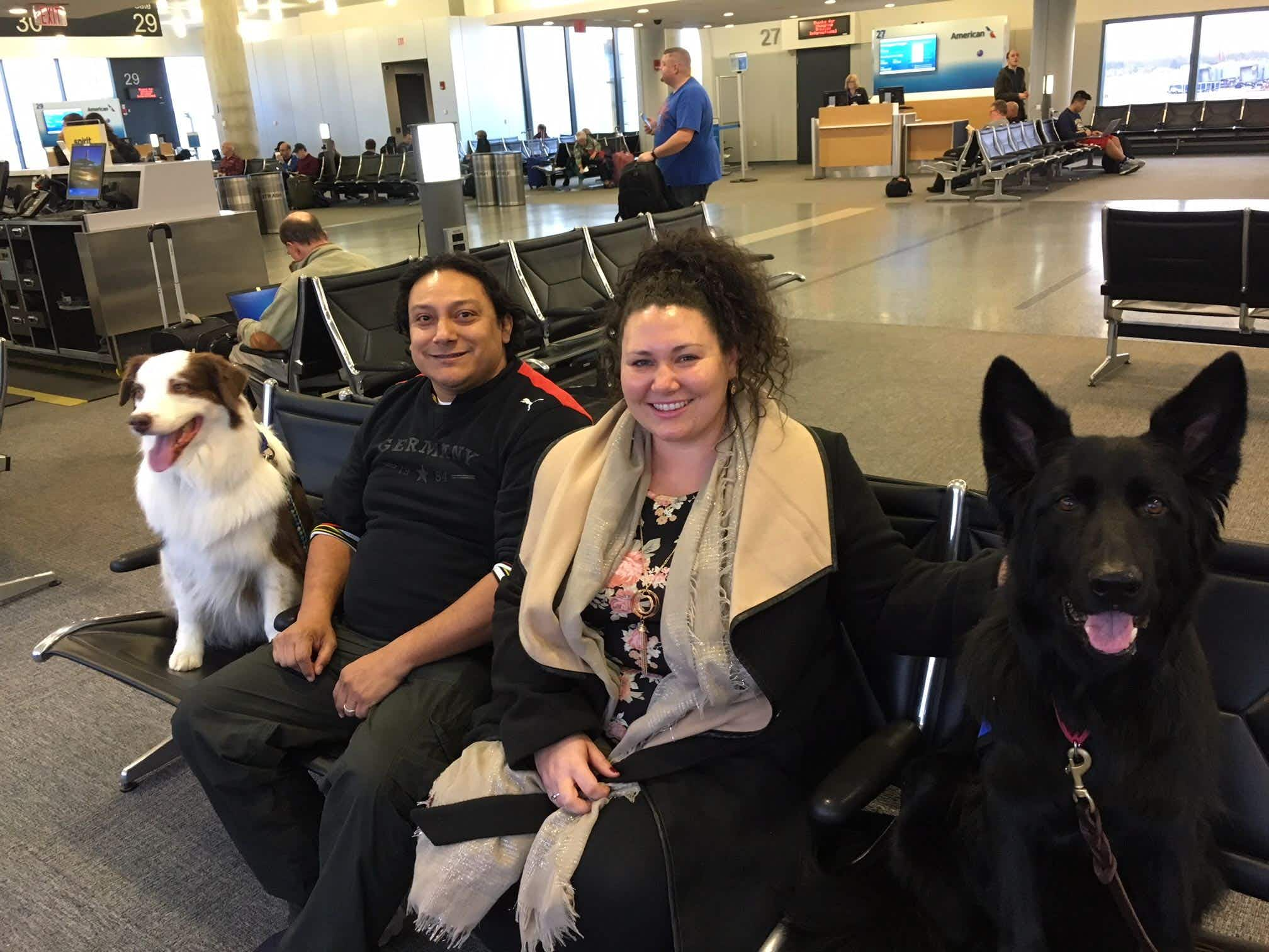 Therapy dogs are helping stressed out travellers at this US airport