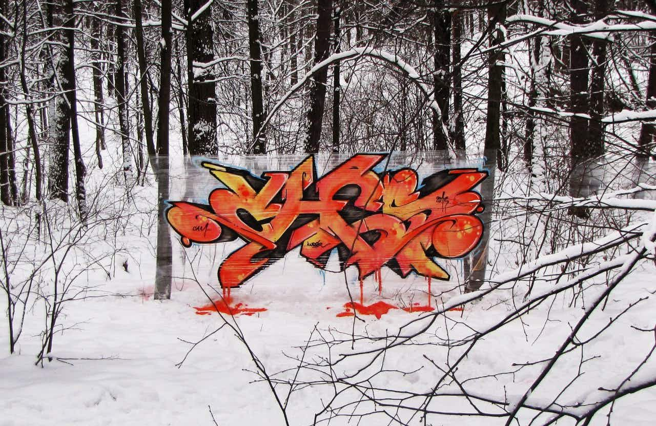 Graffiti artist transforms Moscow's woods with shrink wrap and spray paint