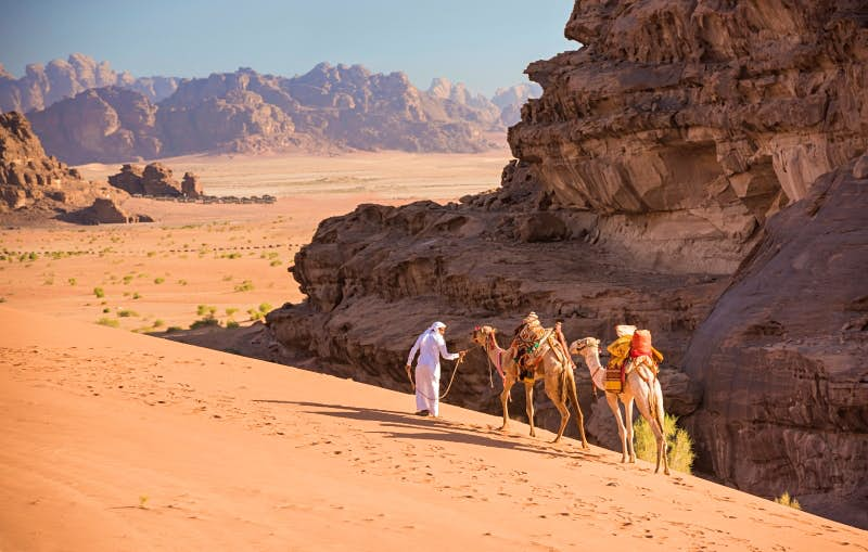 Travel News - A Bedouin guide leads his two dromedarycamels over the tall dunes of Wadi Rum.