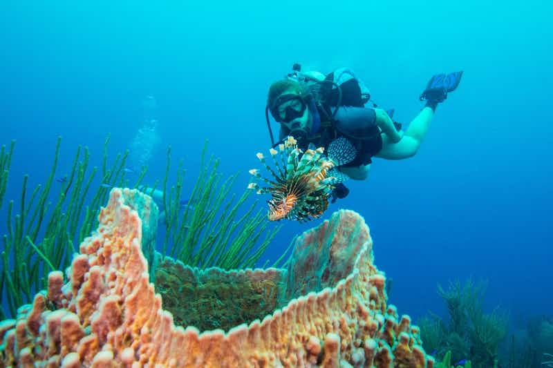 How travellers can win a trip and protect the coral reefs in Belize and Australia