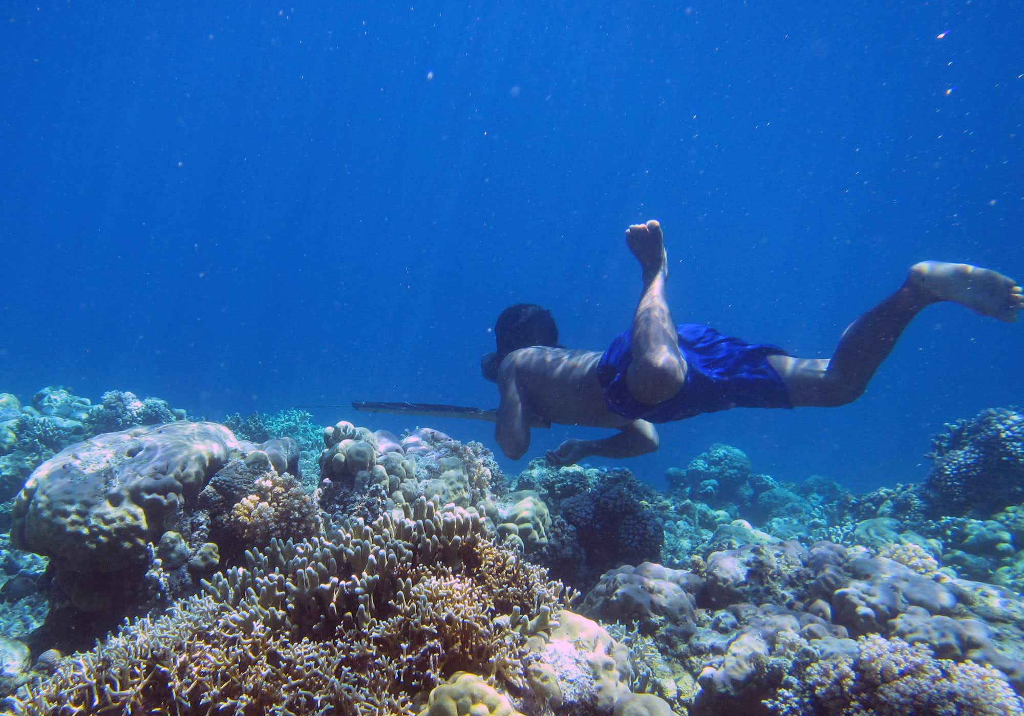 The deep diving secrets of the Bajau Sea Nomads have been unlocked