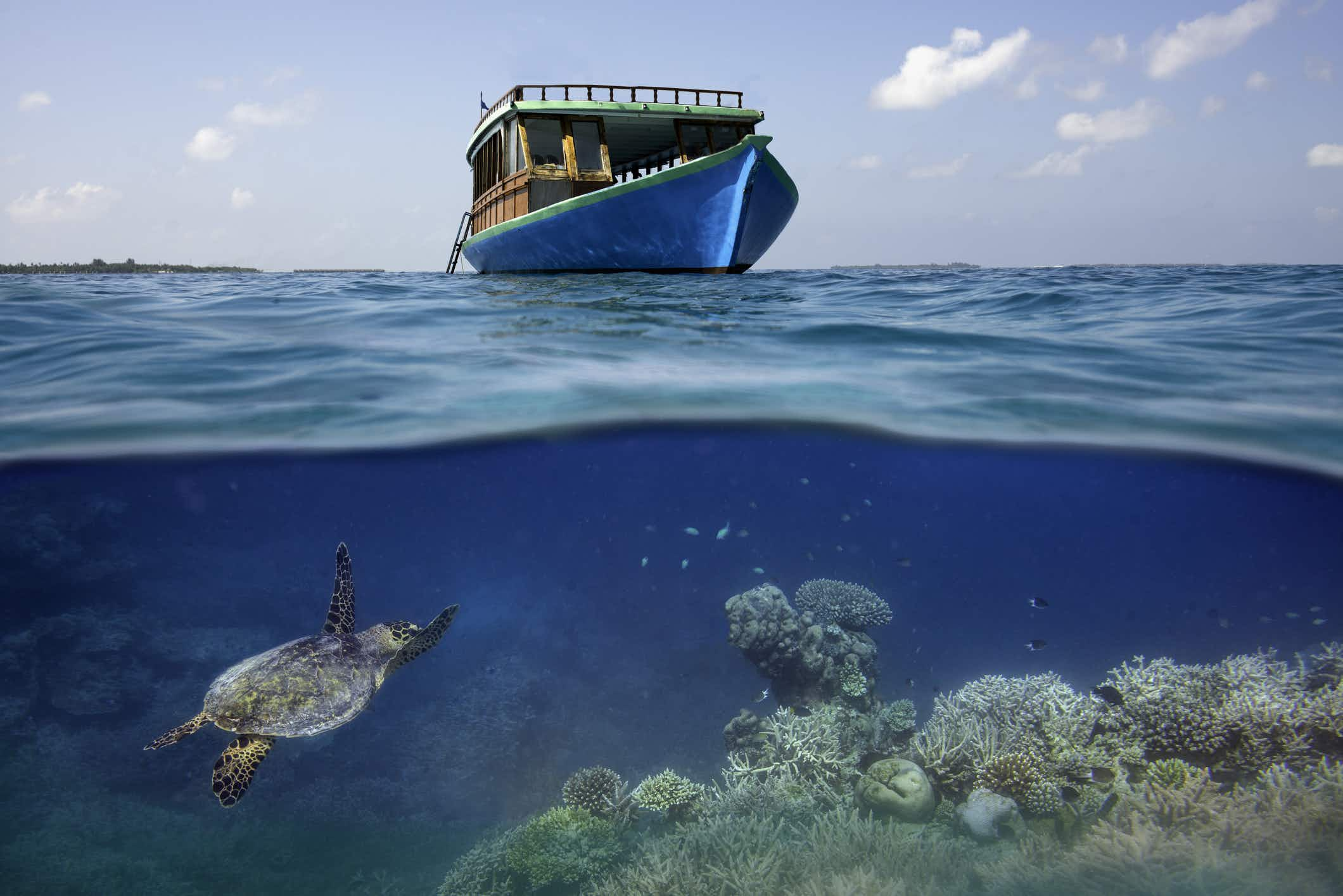 New nature parks to open on Maldives islands of Addu and Fuvahmulah in June