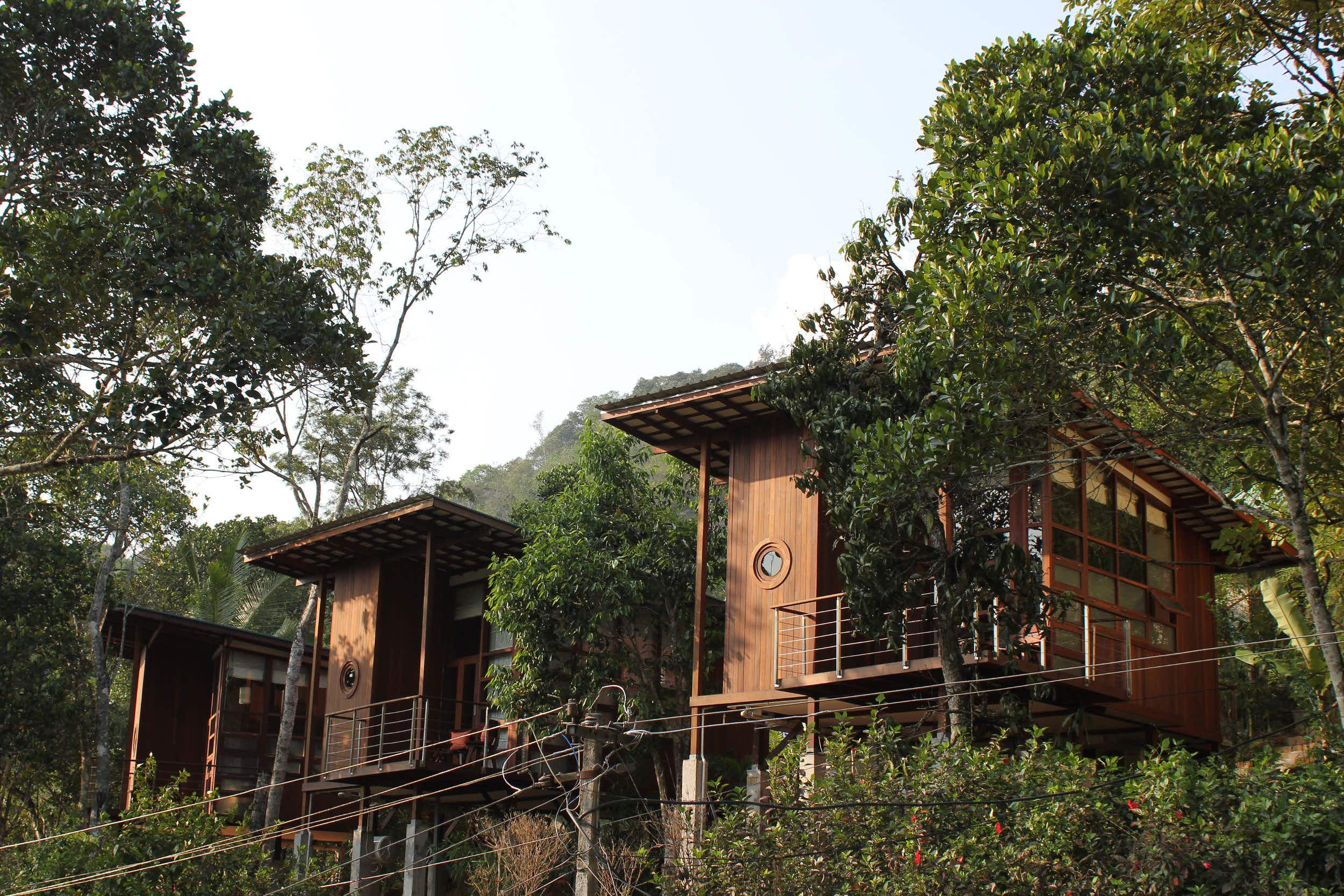 Hang out in a tree house retreat on a cardamom plantation in India