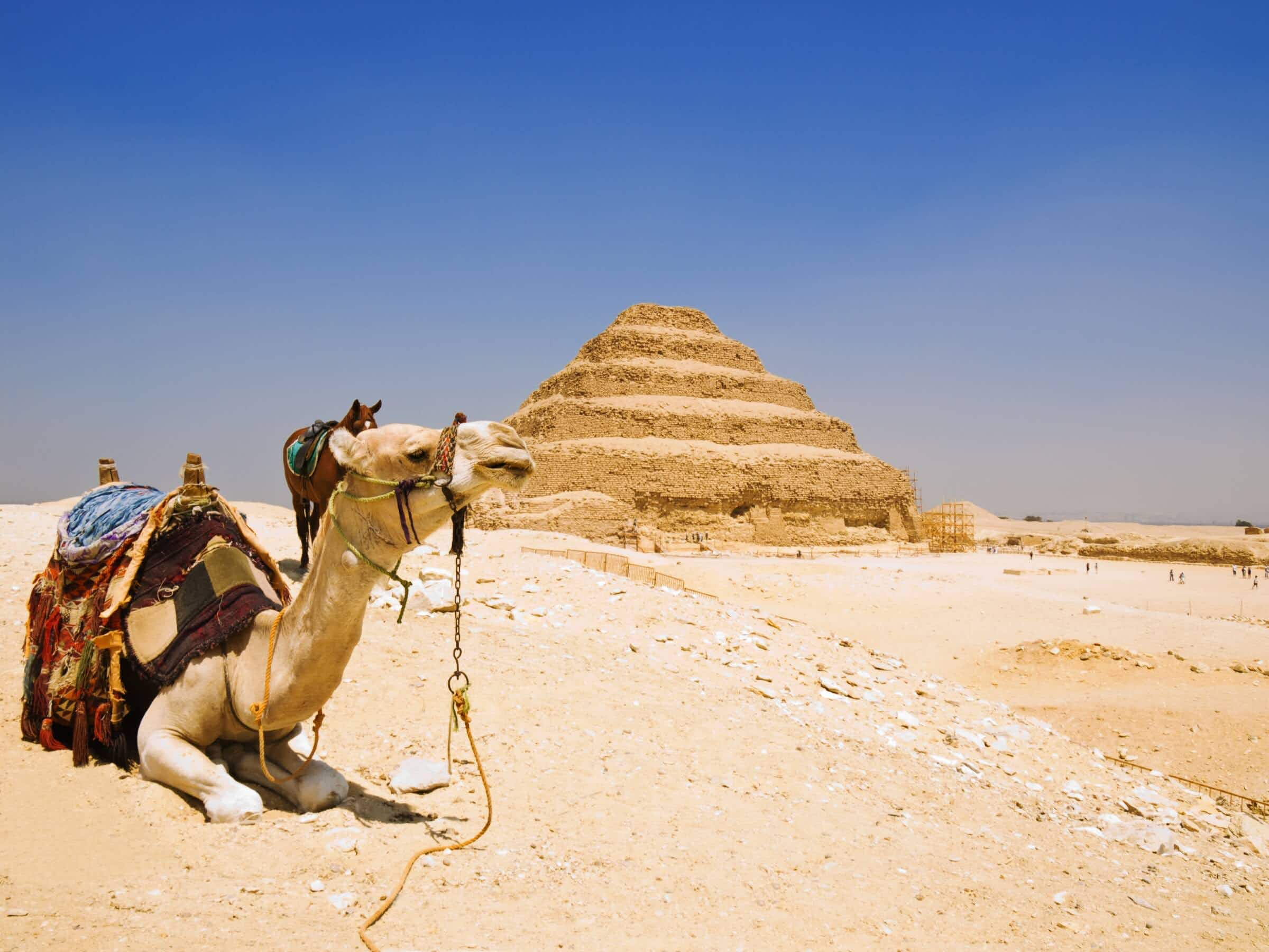 Egypt introduces new law to protect tourists from pestering touts