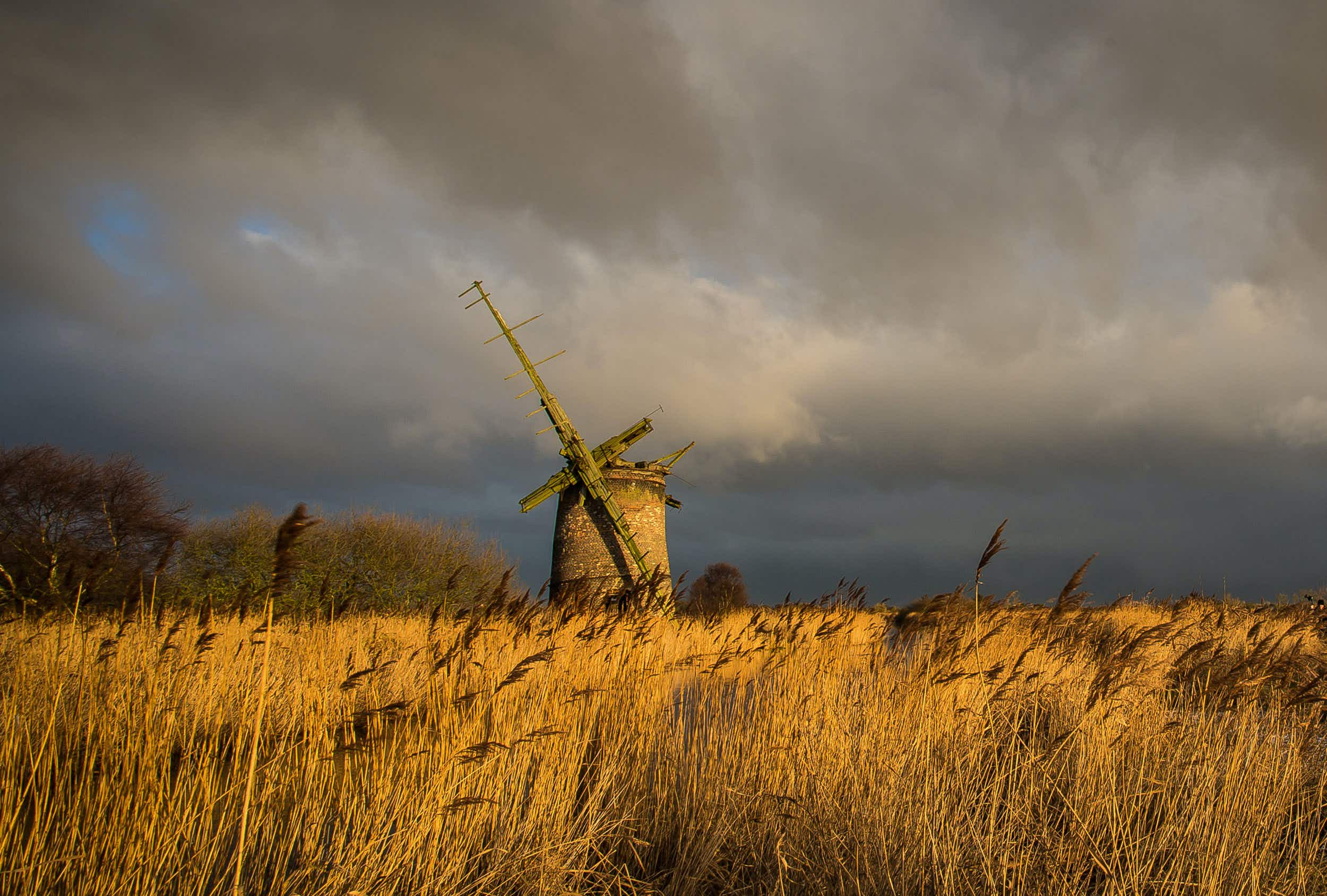 The raw beauty of Norfolk's sweeping landscapes captured by local photographer