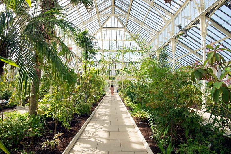 Prime The Worlds Largest Victorian Greenhouse Has Reopened In Interior Design Ideas Gresisoteloinfo