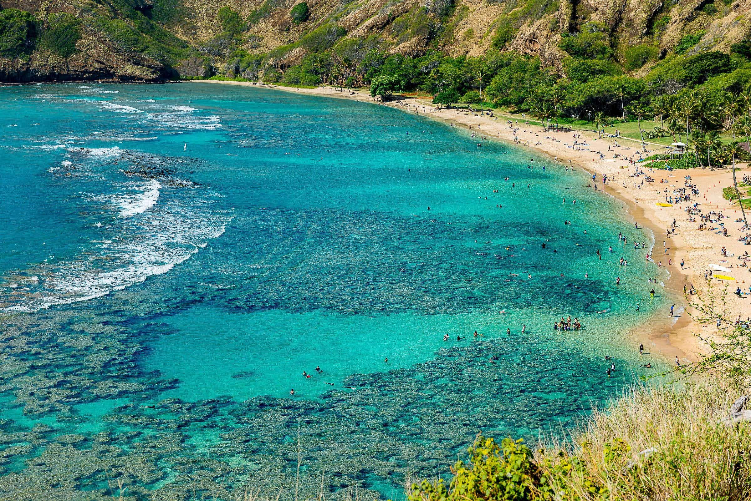 Hawaii is set to be the first US state to ban coral-harming sunscreens