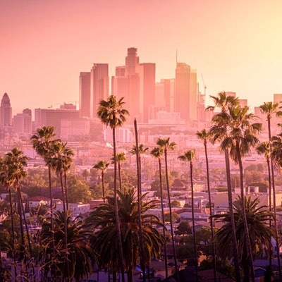 Beautiful sunset of Los Angeles downtown skyline and palm trees in foreground © iStock / Getty Images