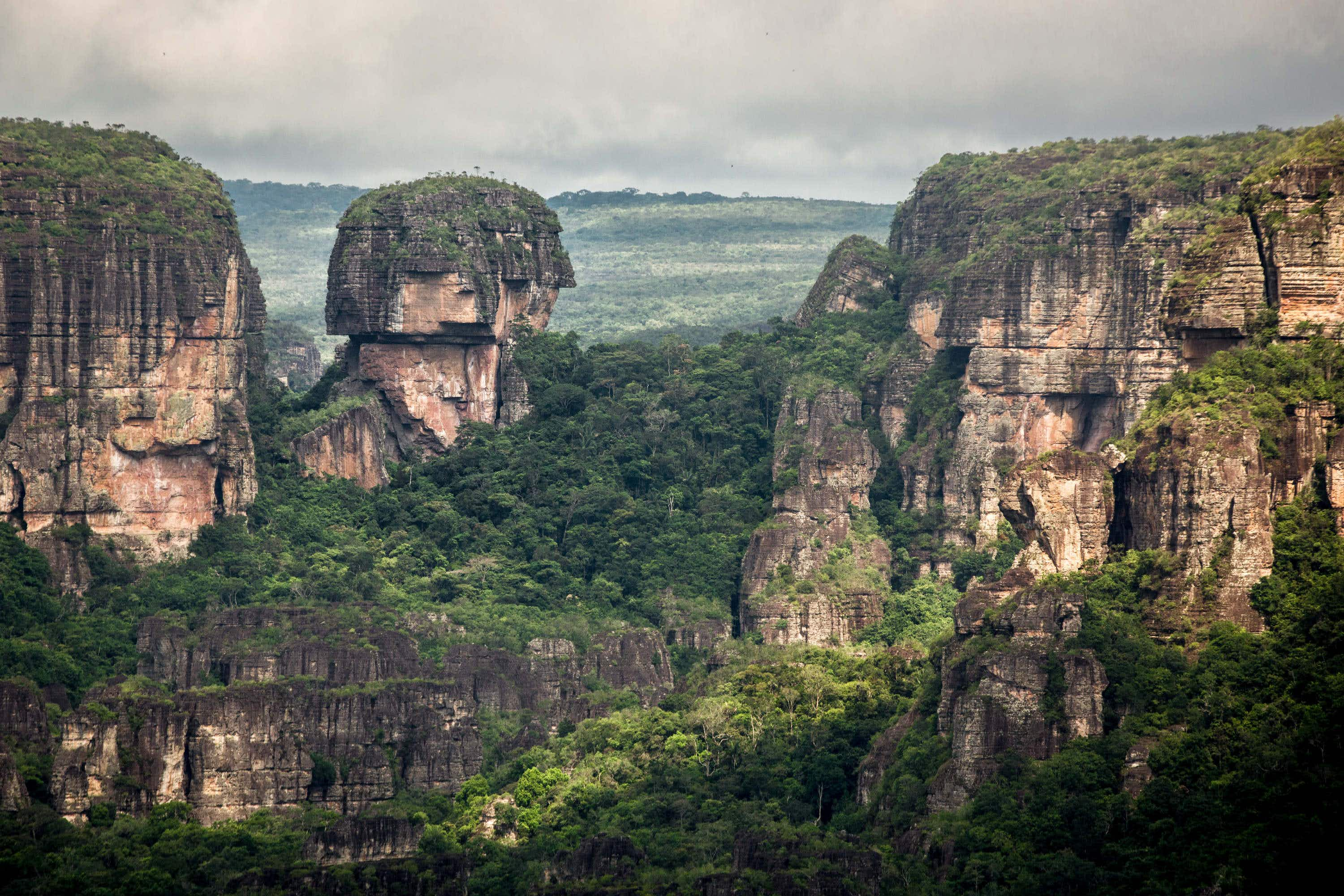 Colombia now has the world's largest tropical rainforest national park
