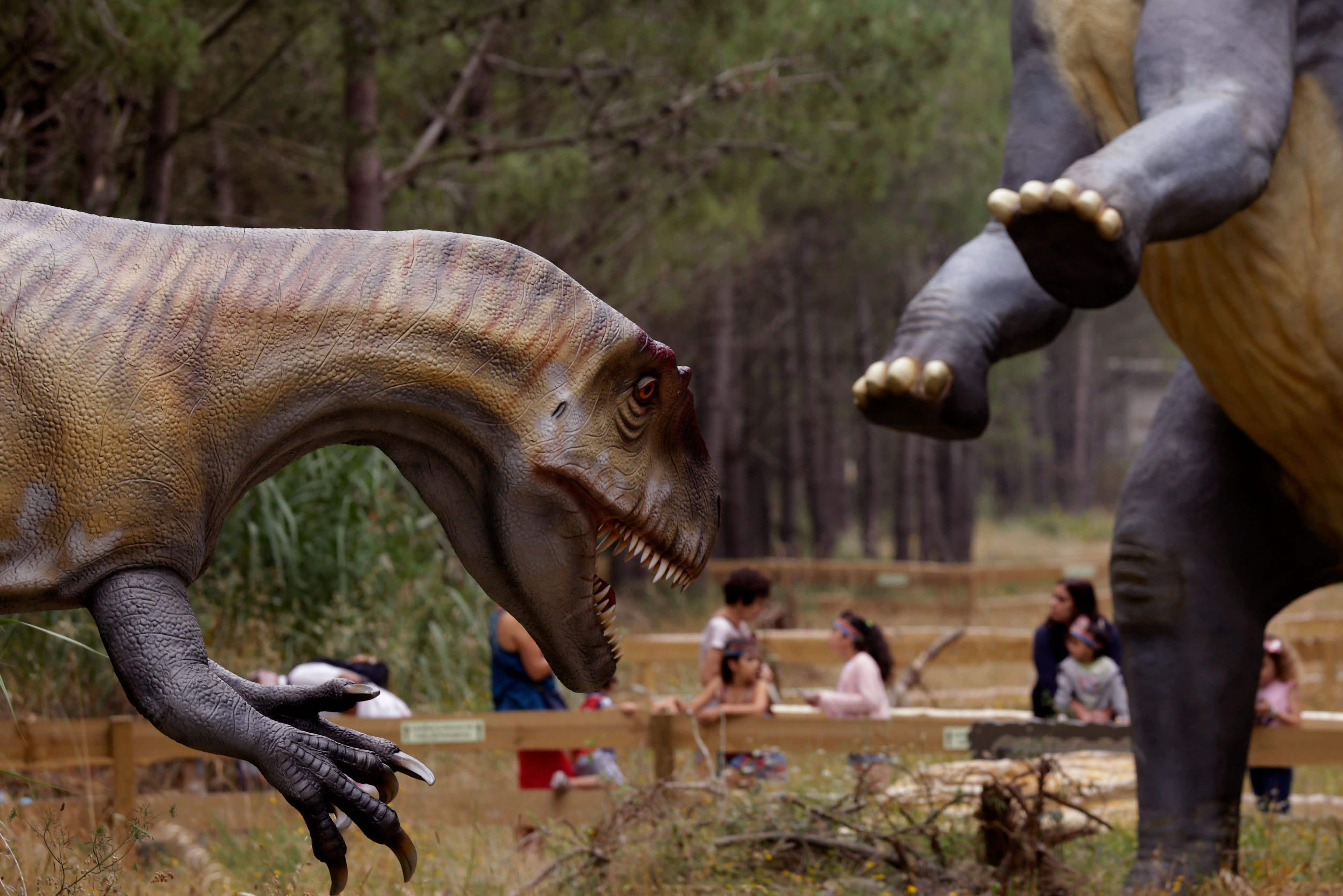 If you're looking for the real Jurassic Park, you might want to try Portugal