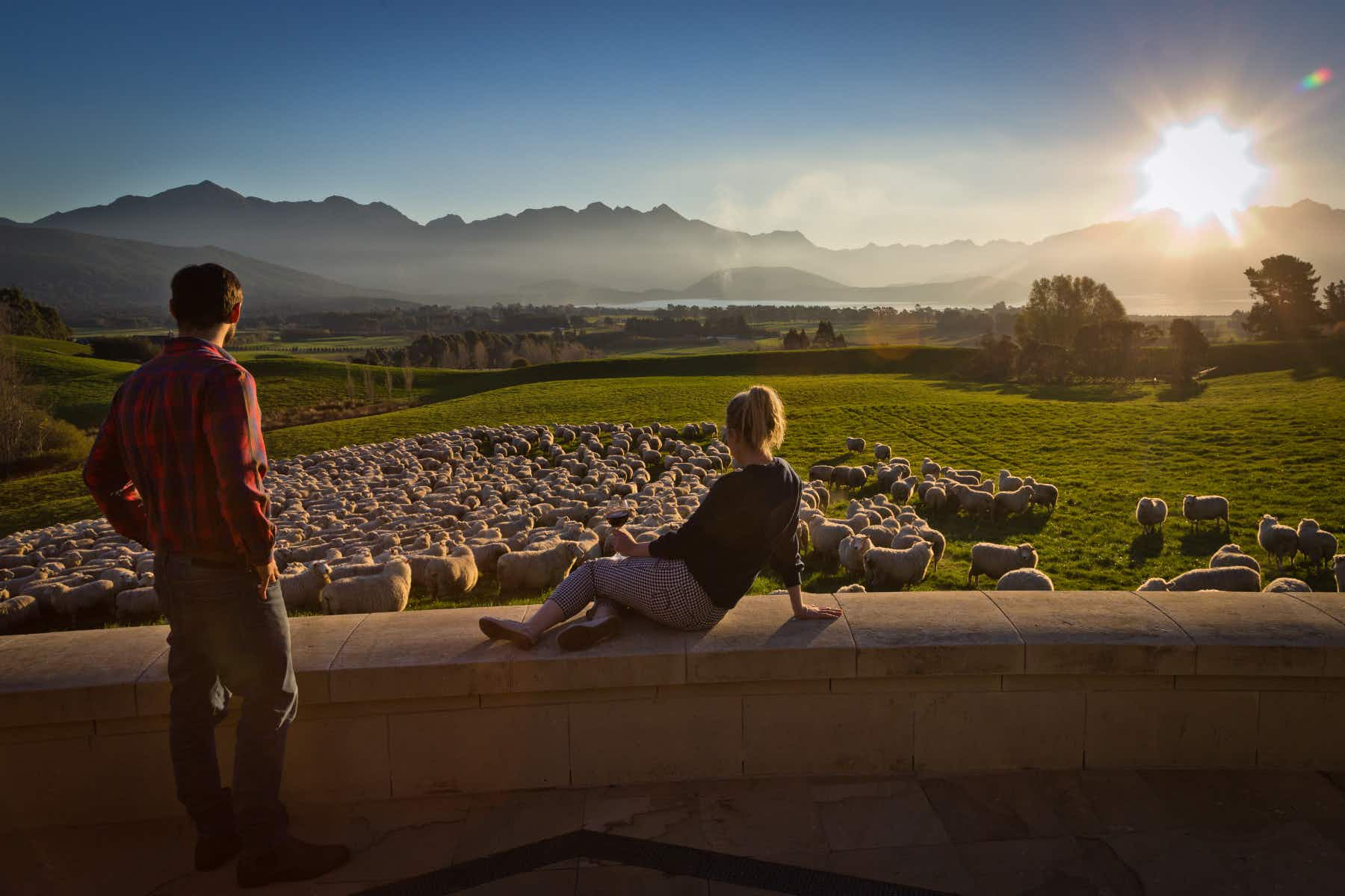 Stay on a New Zealand sheep farm without skipping the luxury