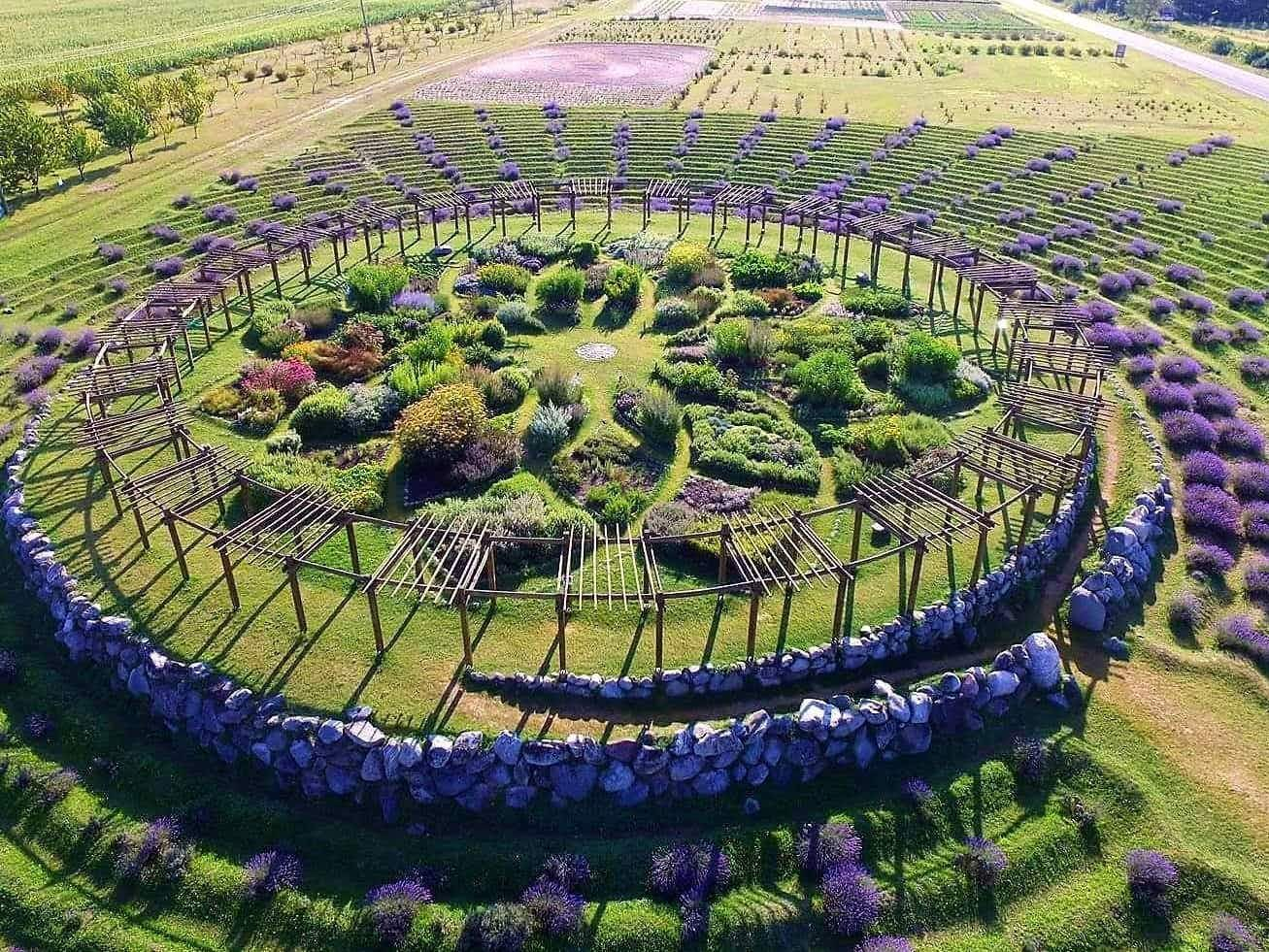 Wander through this lavender labyrinth in the most unlikely place