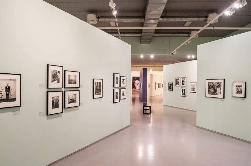 Long exposure: Antwerp photography museum opens doors to nudists