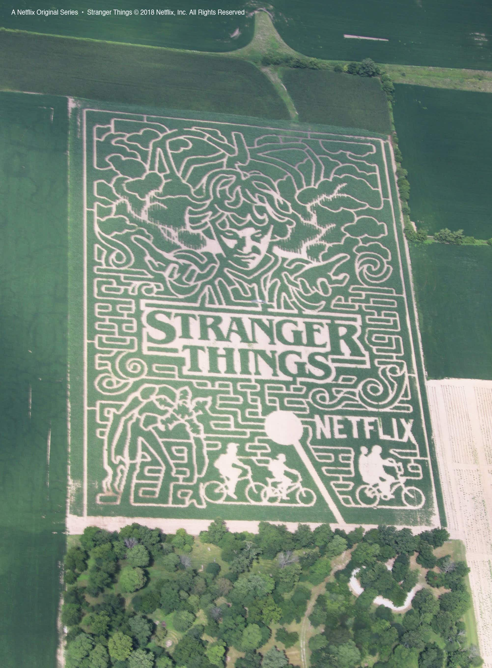 Step into the Upside Down at this colossal Stranger Things corn maze