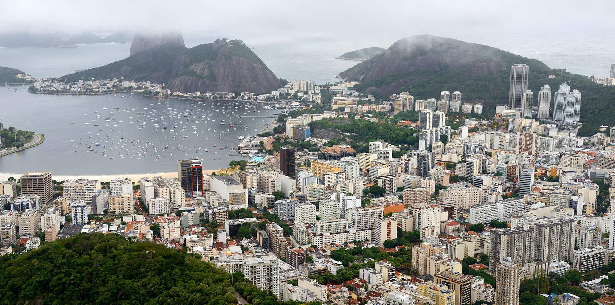 Rio de Janeiro develops new craze for Brazilian wine