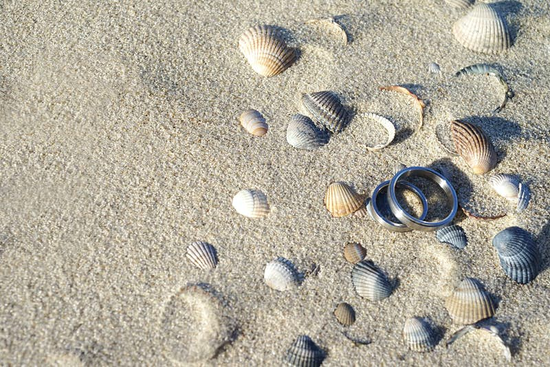 Travel News - Close-Up Of Wedding Rings And Seashells On Sand At Beach