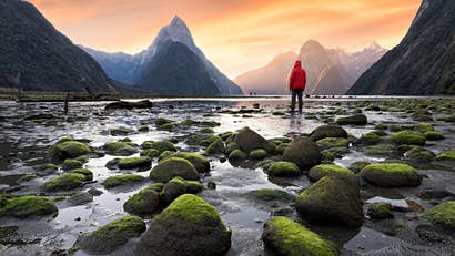 New Zealand's new visitor rules come into effect on 1 October