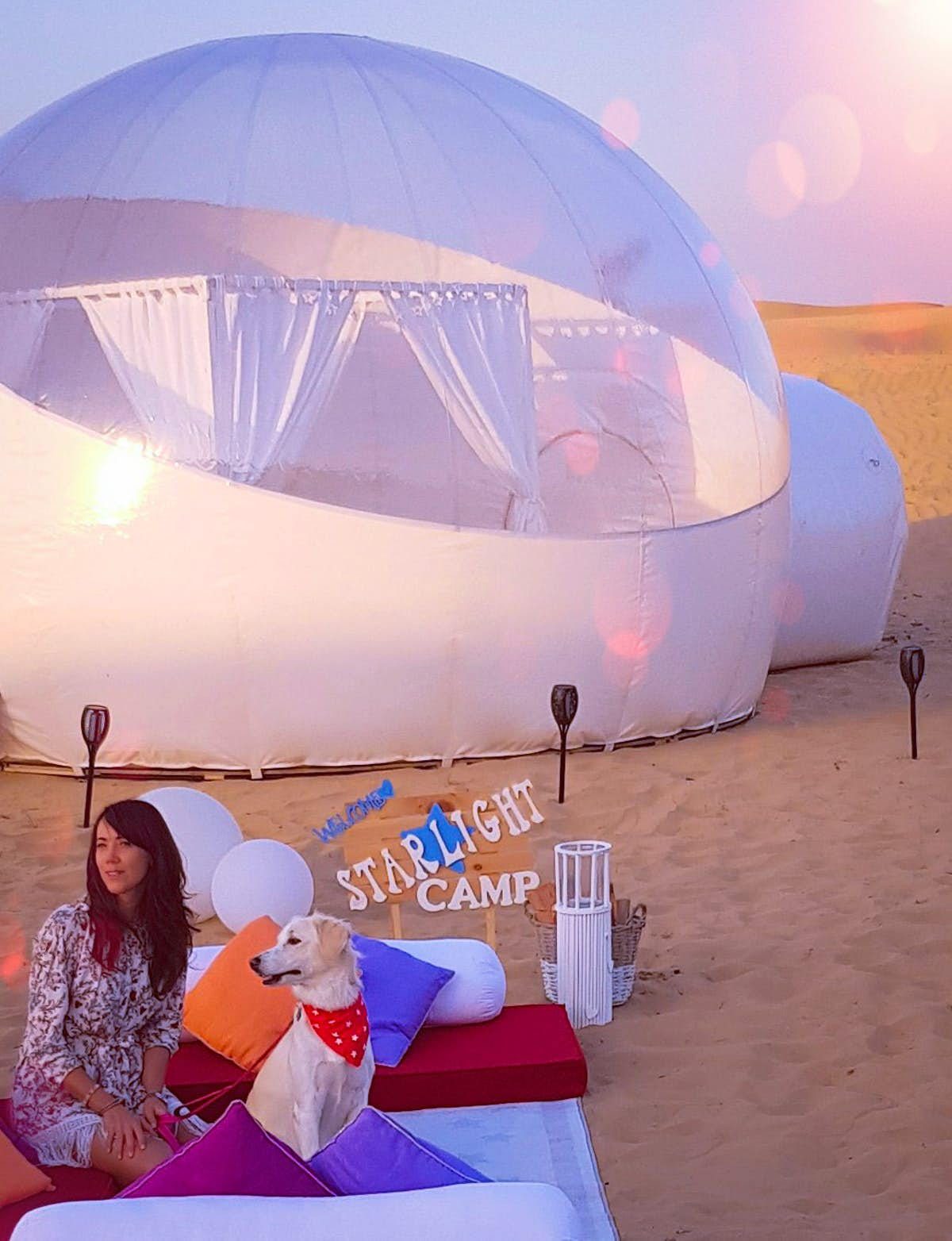 You and your dog can enjoy a night under the stars in a bubble tent outside Dubai