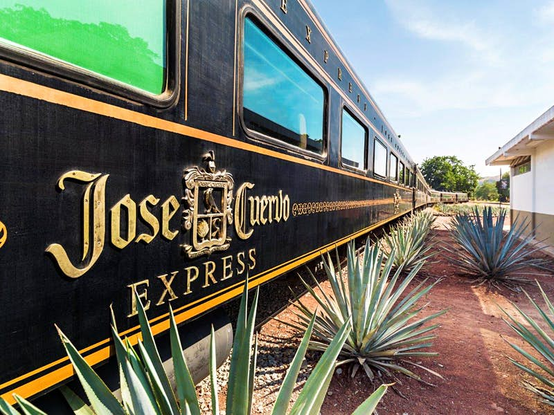 Best Tequila 2020.All Aboard Mexico S Tequila Train Lonely Planet