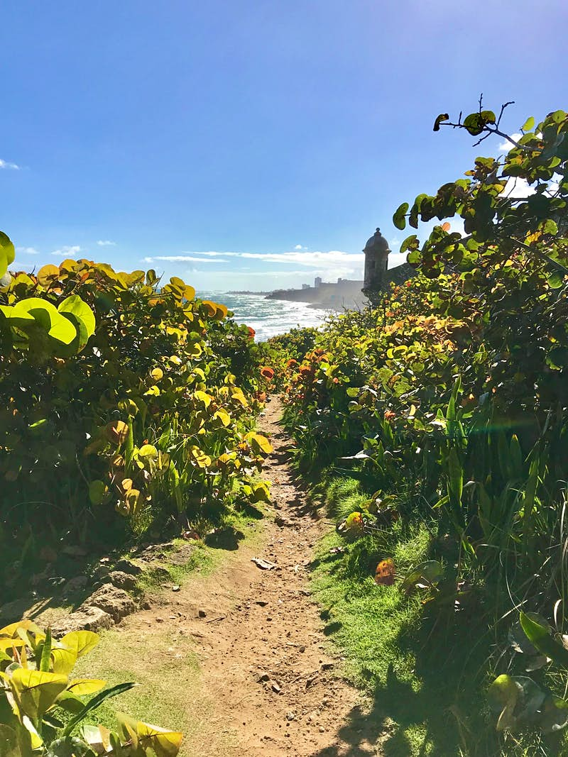 Take a stroll through history on a newly-restored trail in Puerto Rico - Lonely Planet