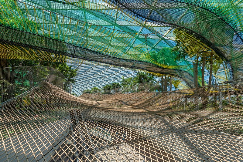 Travel News - Manulife Nets at Canopy Park