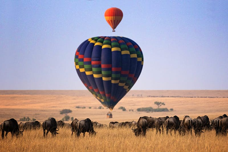 A hot air balloon over wildlife in the Masai Mara National Reserve