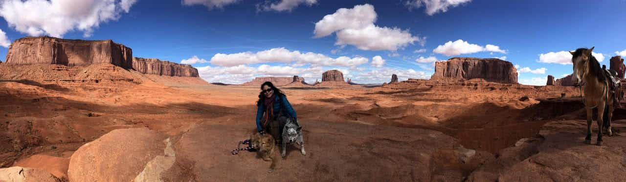 You can now take a tour of the Grand Canyon with your dog