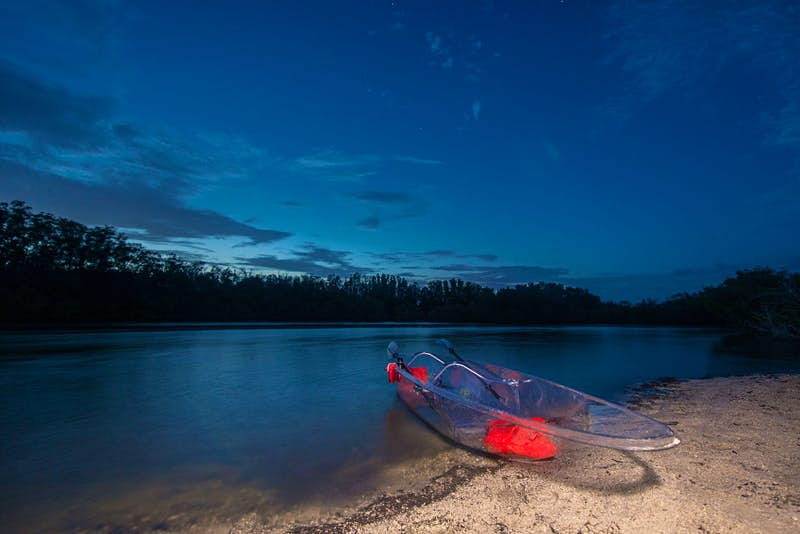 Paddle through glowing bioluminescent waters in see-through kayaks in Florida