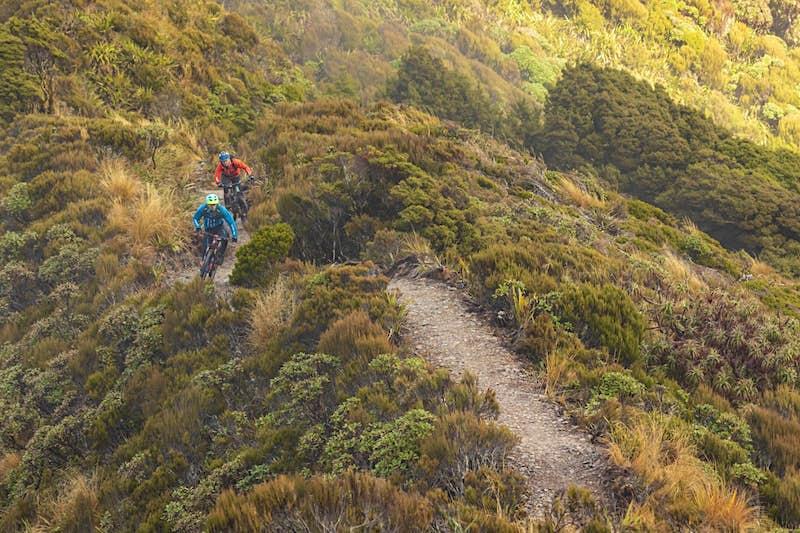 Two people mountain biking or hiking the Paporoa Track