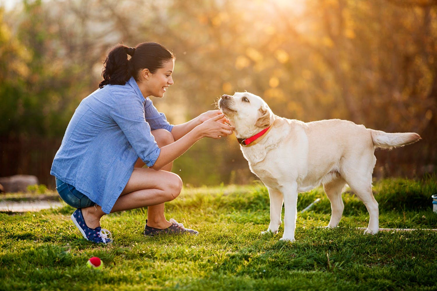 A woman petting a white dog