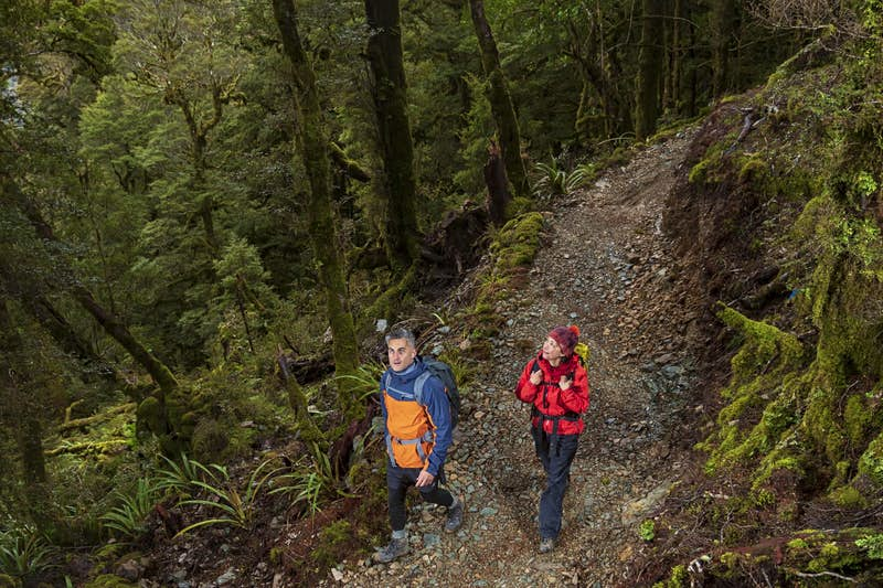 People walking on the Paparoa Track in New Zealand