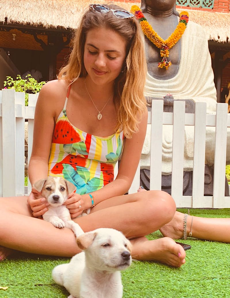 A girl playing with puppies at a hotel in Bali.