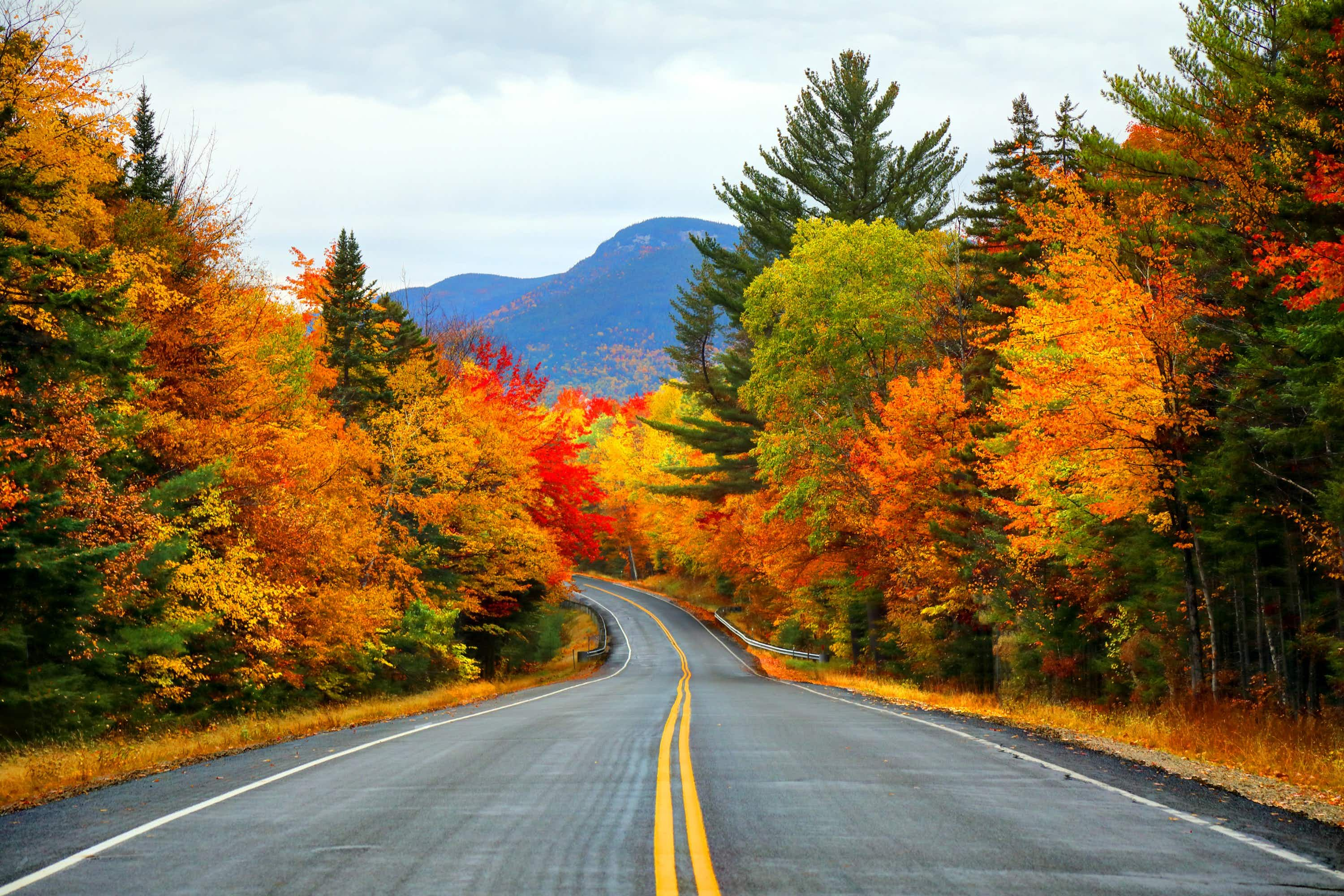 These are the best states in the US to take a summer road trip